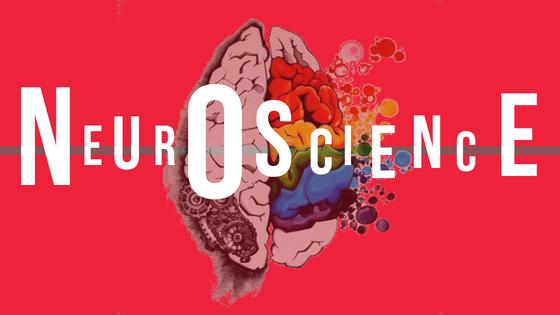 Neuroscience: The key to understanding mental health