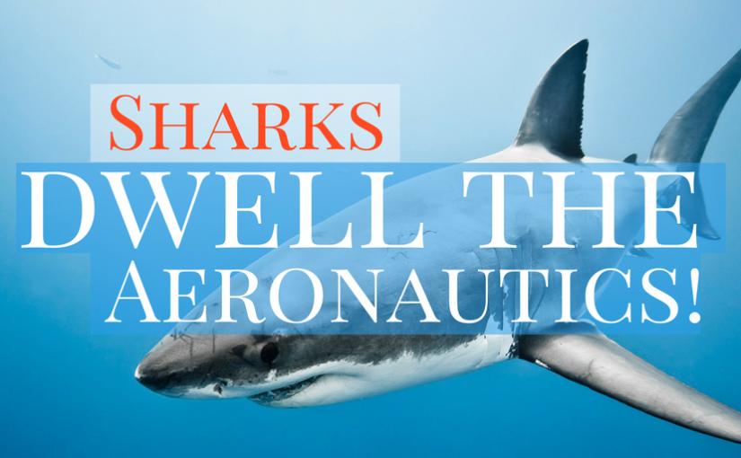 Sharks Dwell The Aeronautics | JSB Conference